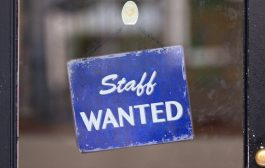 Need Full Time General Labour workers for a Steel Recycling Company