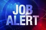 Job Alert: Hiring Now